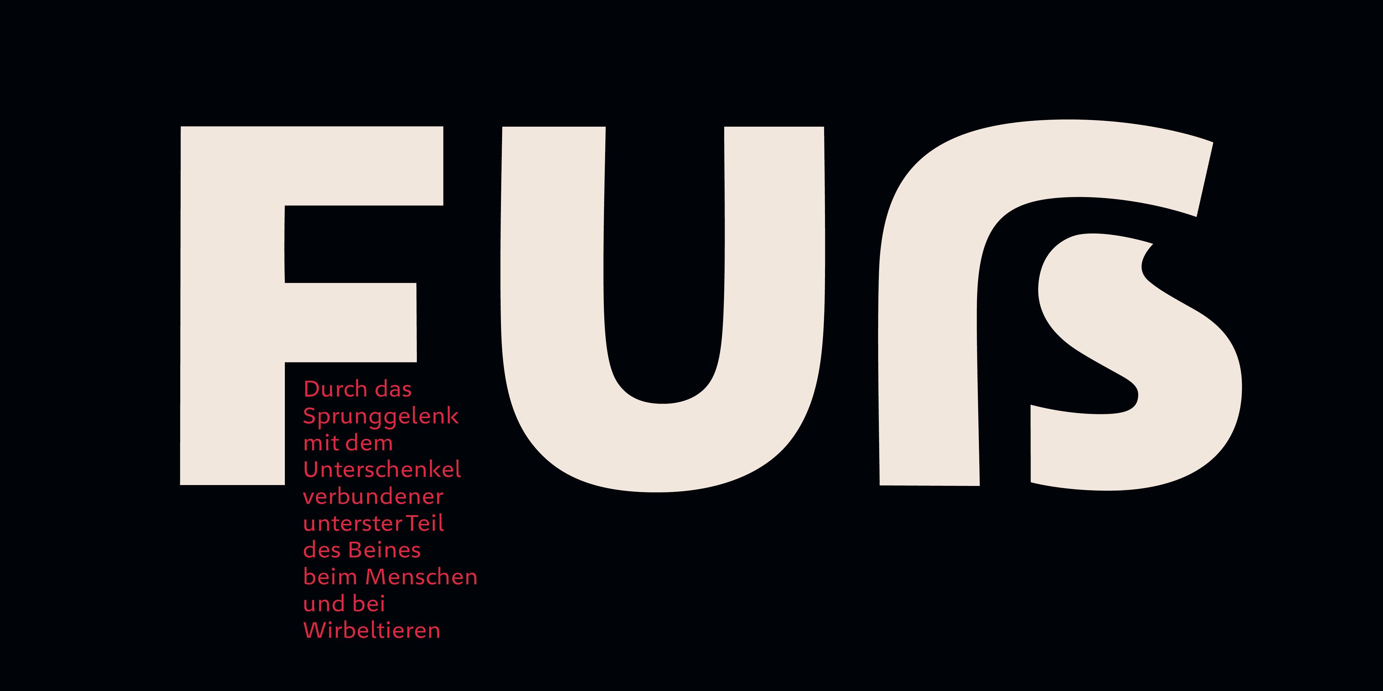 Poster: Typografische Umsetzung zeigt das Versal-Scharf-S