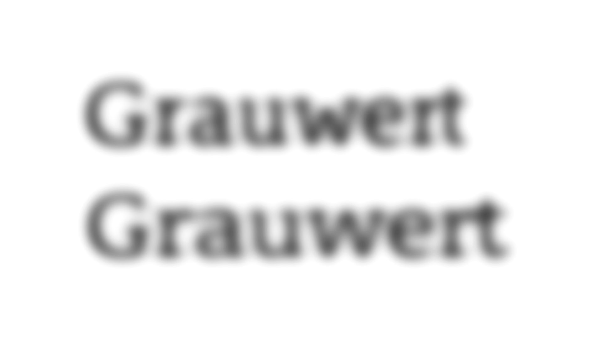 Blurred representation of the German Word